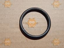 Прокладка термостата DACIA LOGAN 1.4, 1.6 (кольцо) ф50мм (пр-во EuroEx Венгрия) ЕЕ 109689