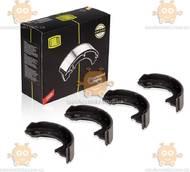 Колодки тормозные SPRINTER (после 2006г) барабанные задний 172х42 (пр-во TRIALLI Италия) ЗЕ 00064733